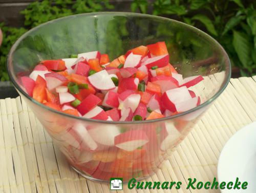 Paprika-Radieschen-Salat mit Frühlingszwiebeln